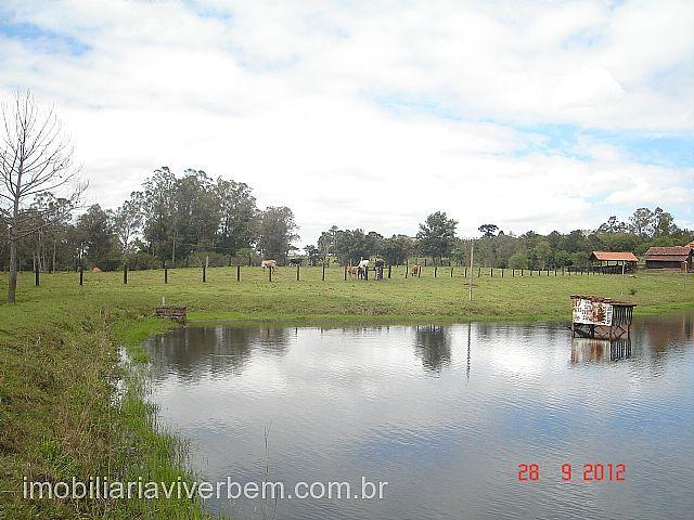 Viver Bem Imóveis - Fazenda 3 Dorm, Boa Vista - Foto 6