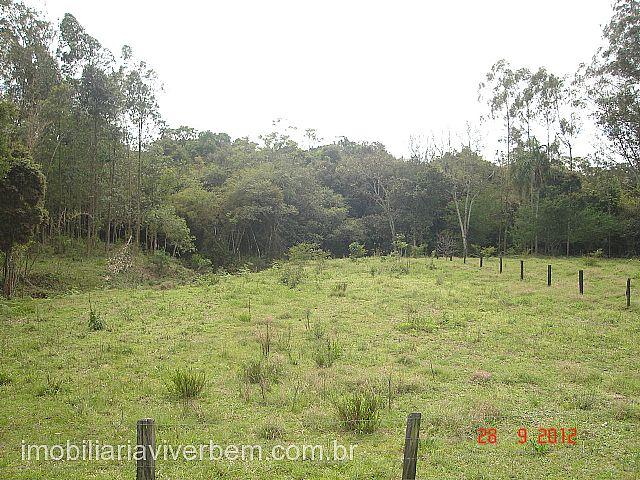 Viver Bem Imóveis - Fazenda 3 Dorm, Boa Vista - Foto 5