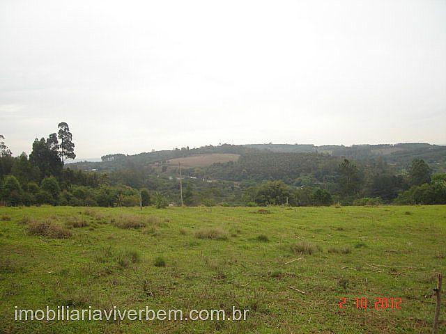Fazenda 2 Dorm, Conceição, São Sebastião do Cai (71118) - Foto 8