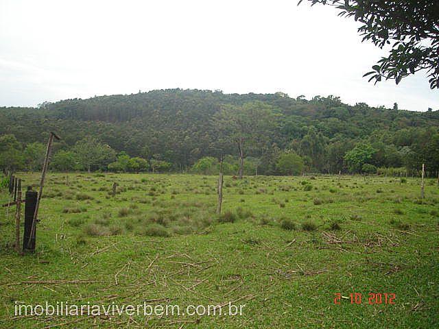 Fazenda 2 Dorm, Conceição, São Sebastião do Cai (71118) - Foto 5