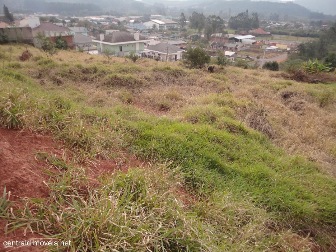 Terreno, Bela Vista, Estancia Velha (353964) - Foto 2