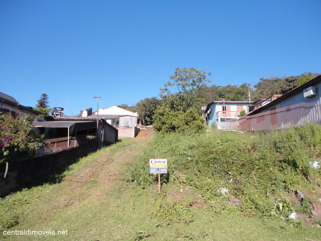Terreno, Floresta, Estancia Velha (363591)