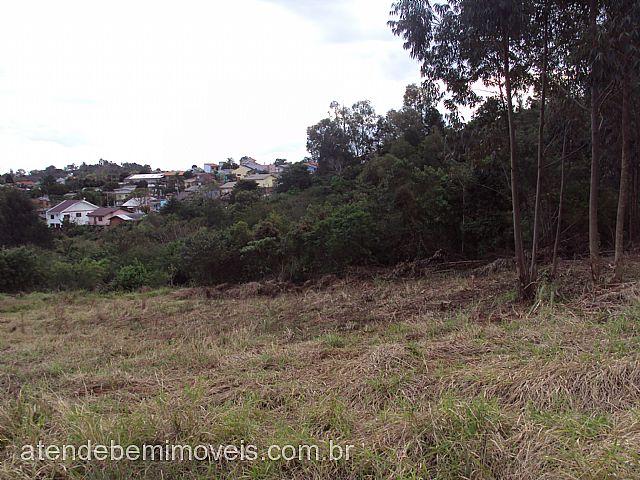 AtendeBem Imóveis - Terreno, Sol Nascente (164045) - Foto 4