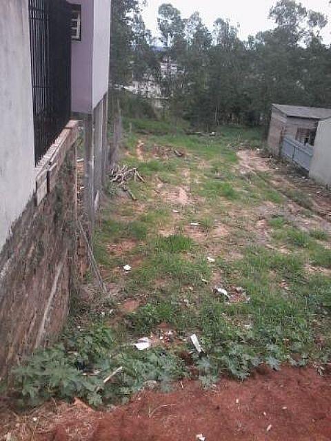 AtendeBem Imóveis - Terreno, União, Estancia Velha - Foto 3