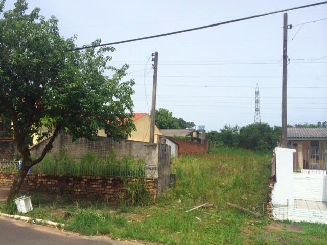 Terreno, Genuino Sampaio, Campo Bom (305557) - Foto 2