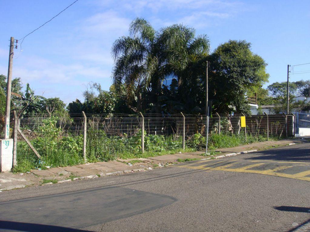Terreno, Rondonia, Novo Hamburgo (310592)