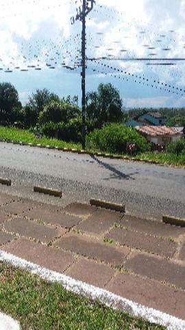 Terreno, Feitoria, São Leopoldo (315051) - Foto 4