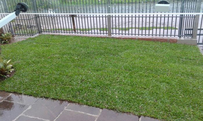 Casa 1 Dorm, Campo Grande, Estancia Velha (338882) - Foto 5