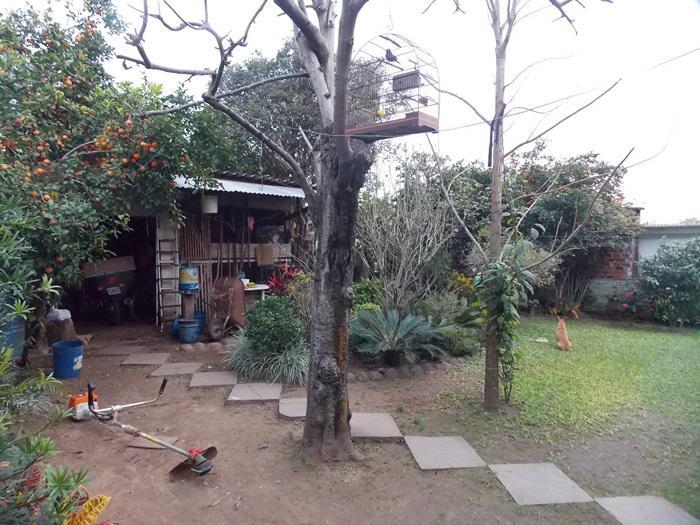 AtendeBem Imóveis - Casa 3 Dorm, Bela Vista - Foto 6