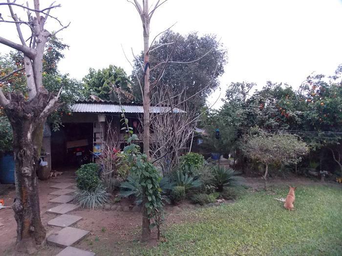 AtendeBem Imóveis - Casa 3 Dorm, Bela Vista - Foto 5