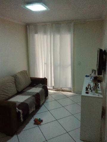 Apto 2 Dorm, Pinheiro, São Leopoldo (347065)