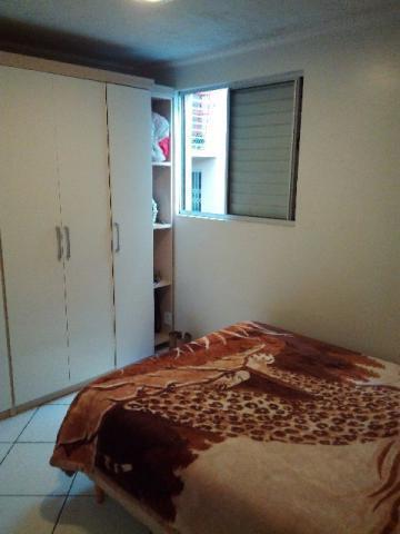 Apto 2 Dorm, Pinheiro, São Leopoldo (347065) - Foto 2