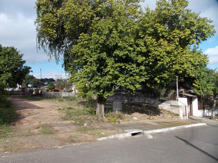 Terreno, Guarani, Novo Hamburgo (354562) - Foto 3