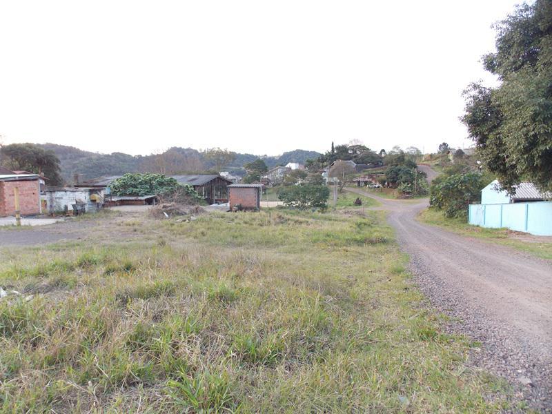 Terreno, Floresta, Estancia Velha (354639) - Foto 8