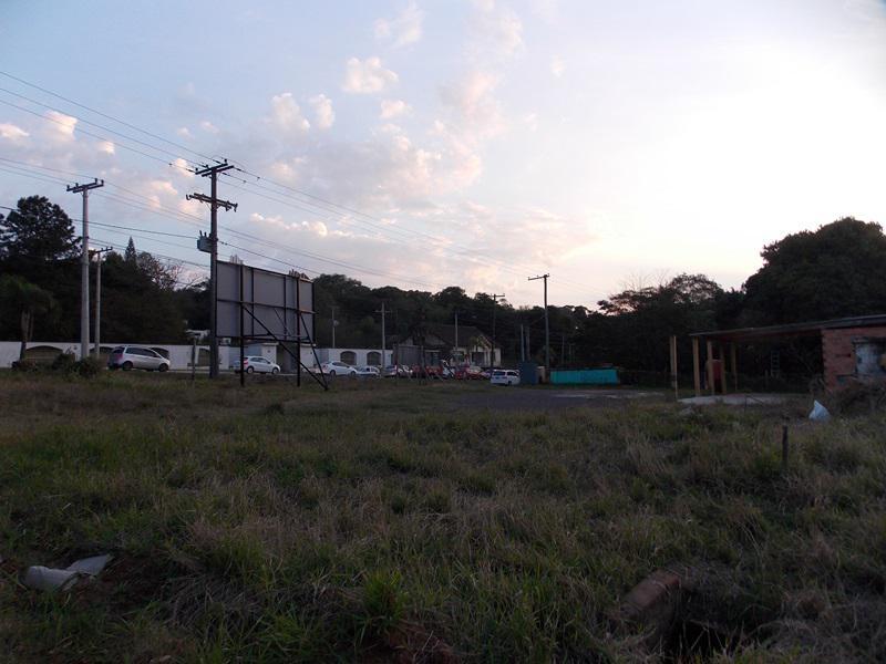 Terreno, Floresta, Estancia Velha (354639) - Foto 7