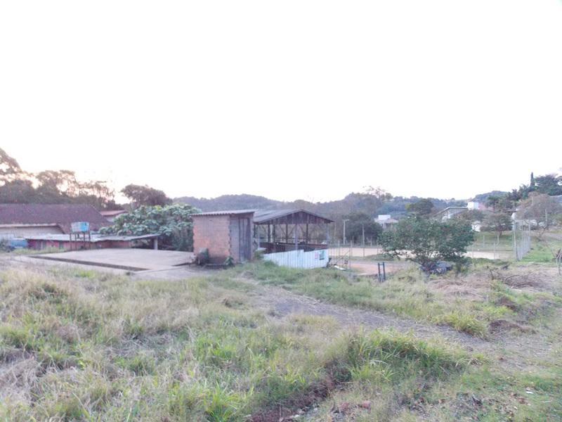 Terreno, Floresta, Estancia Velha (354639) - Foto 5