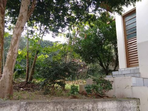 Casa 3 Dorm, Santo André, São Leopoldo (359741) - Foto 6