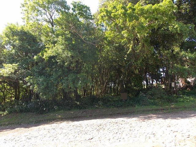 Terreno, Colina Verde, Ivoti (363756) - Foto 8