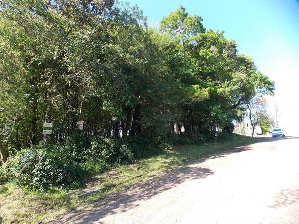 Terreno, Colina Verde, Ivoti (363756)