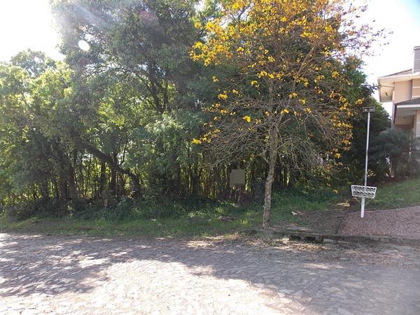 Terreno, Colina Verde, Ivoti (363756) - Foto 4