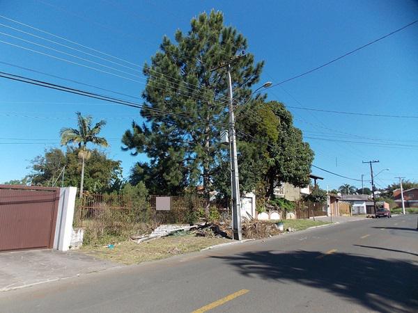 AtendeBem Imóveis - Terreno, São Jose (364426) - Foto 2