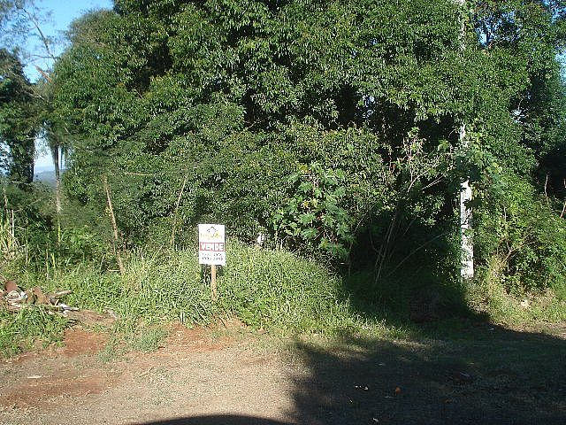 Terreno, Jardim Panorâmico, Ivoti (32060) - Foto 3