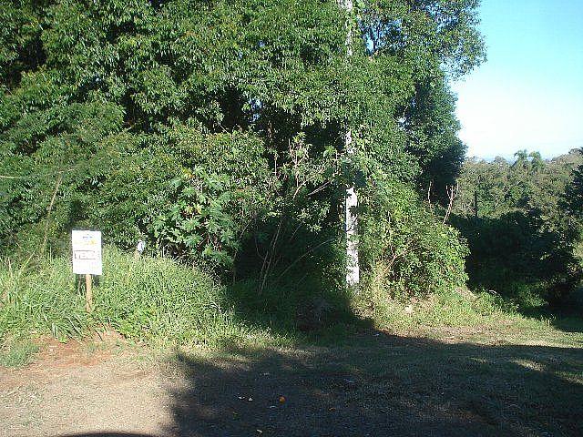 Terreno, Jardim Panorâmico, Ivoti (32060) - Foto 2