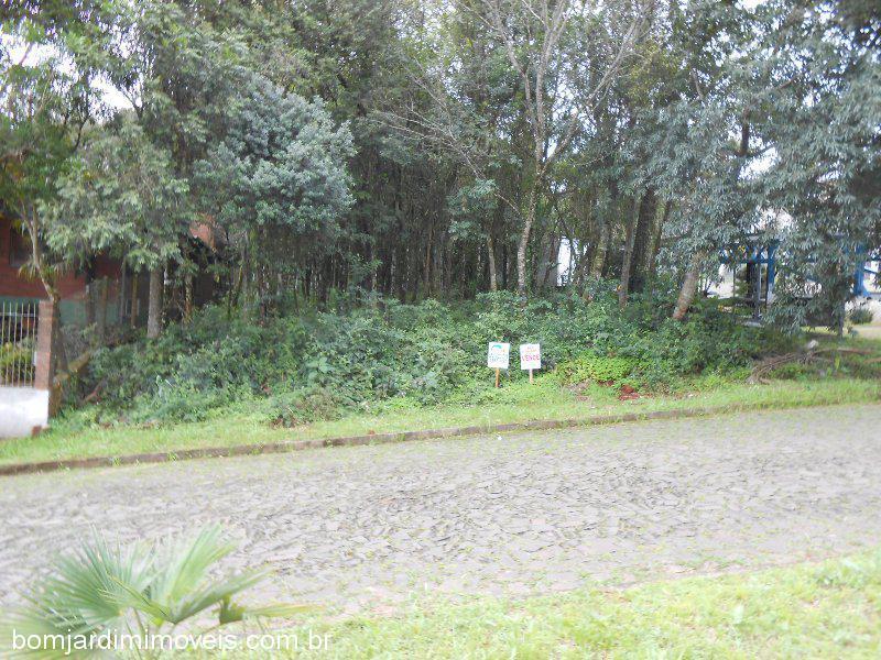 Terreno, Jardim Planalto, Ivoti (357627)