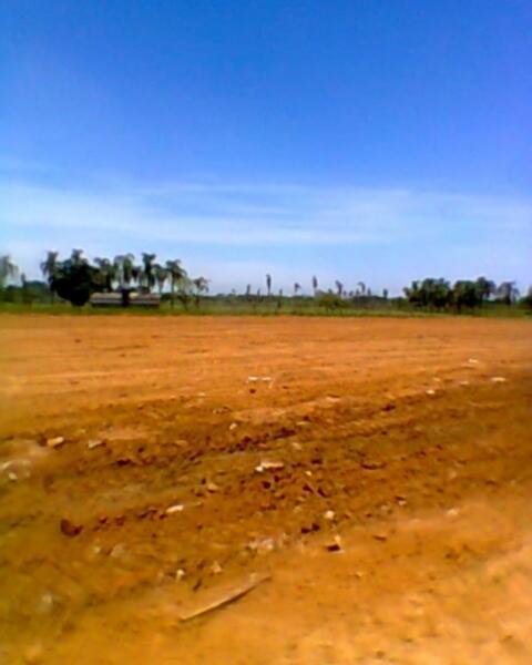 JFernando Imóveis - Terreno, Mato Grande, Canoas - Foto 7