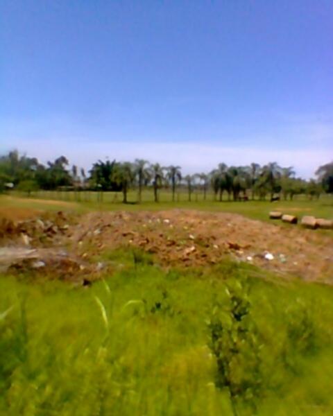 JFernando Imóveis - Terreno, Mato Grande, Canoas - Foto 4
