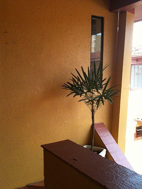 JFernando Imóveis - Apto 2 Dorm, Centro, Imbé - Foto 6