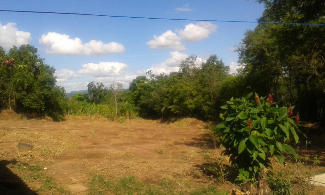 JFernando Imóveis - Casa 2 Dorm, Caju (306678) - Foto 2